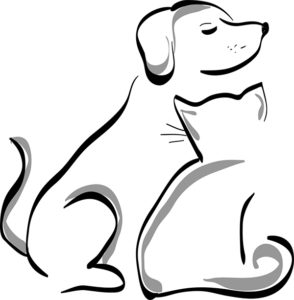 dog and cat line drawn image
