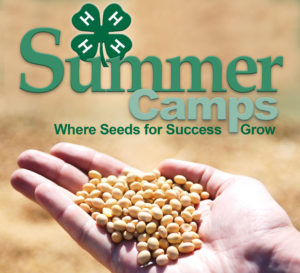 Cover photo for 2019 4-H Summer Camps