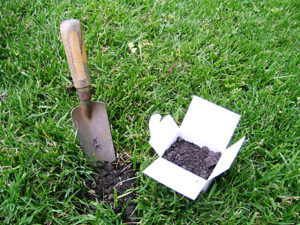 Cover photo for Soil Testing for Lawns and Garden