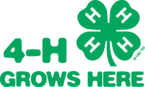 Cover photo for New 4-H Community Clubs