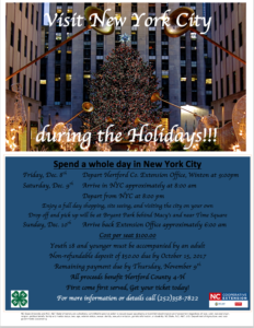 Cover photo for Seats Still Available for the 4-H New York City Fundraiser Trip