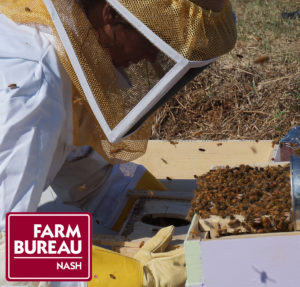 Beekeeper wearing protective clothing and working with bees. Image includes Farm Bureau logo