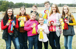 Cover photo for Winners of Hereford Judging Contest