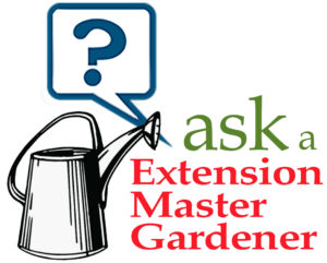 Ask A Extension Master Gardener image