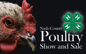 Cover photo for 4-H Poultry Show and Sale