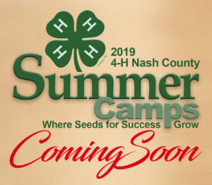 Cover photo for 4-H Summer Camps - Coming Soon