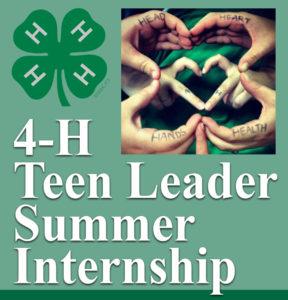 4-H Teen Leader Summer Internship flyer image