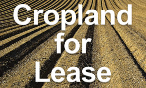 Cover photo for Nash County Offers Cropland for Lease