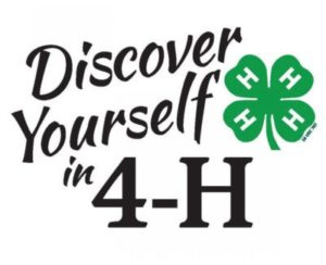 Discover Yourself in 4-H