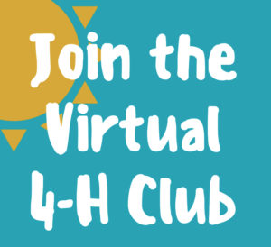 Cover photo for Stay connected with 4-H Club Meetings Virtually!!!