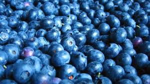 Cover photo for Cooking Up the Season - Blueberries
