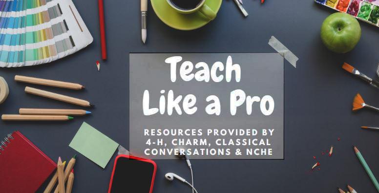 Teach Like a Pro