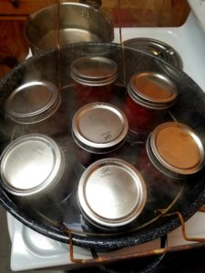 Cover photo for 2021 Virtual Home Food Preservation Classes