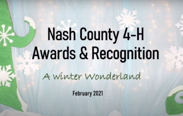 4-H Awards and Recognition header image