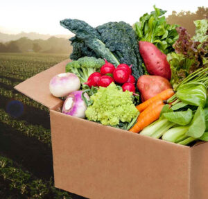 Cover photo for CSA Boxes Available for Seniors